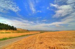 Foto de HDR, vista ao telefone Megiddo Fotografia de Stock Royalty Free