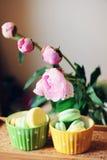foto de la Aún-vida con las tazas, los macarrones y la peonía Fotografía de archivo libre de regalías