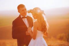Foto de la bella arte de un par atractivo de la boda Fotos de archivo