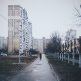Foto de la calle del invierno Fotografía de archivo libre de regalías