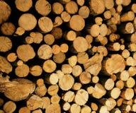Foto de la leña del Woodpile Imagenes de archivo