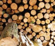 Foto de la leña del Woodpile Imagen de archivo libre de regalías