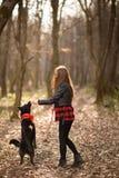 Foto de la muchacha hermosa con su perro negro en la madera Visi?n posterior imagen de archivo libre de regalías