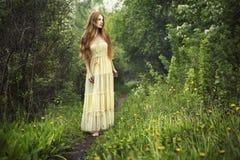 Foto de la mujer romántica en bosque de hadas Foto de archivo