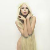 Señora hermosa con el pelo magnífico Foto de archivo