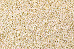Foto de la textura del fondo del primer de las semillas de sésamo blancas Fotos de archivo