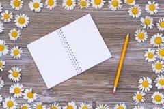Foto de la visión superior de la libreta espiral en blanco abierta con el lápiz amarillo fotografía de archivo libre de regalías