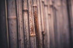 Foto de la vista lateral de una pared de bambú natural imágenes de archivo libres de regalías