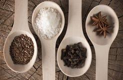 Foto de las cucharas de mentira de la cocina con los condimentos para las bebidas y el dulce: coco rallado, clavos, anís de estre Fotografía de archivo