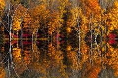 Foto de las reflexiones de la caída Foto de archivo libre de regalías