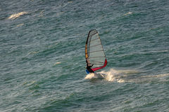 Foto de ondas da equitação do Windsurfer Foto de Stock Royalty Free