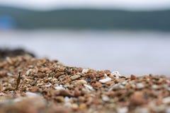 Foto de piedra del mar Imágenes de archivo libres de regalías