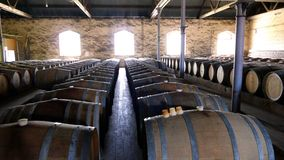 Foto de tambores de vinho do vintage nas fileiras Imagem de Stock Royalty Free