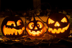 Foto de tres calabazas para Halloween Imagen de archivo libre de regalías