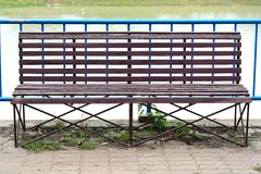 Foto de um banco de madeira no parque Imagens de Stock Royalty Free