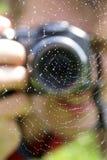 Foto de um spiderweb Fotos de Stock Royalty Free