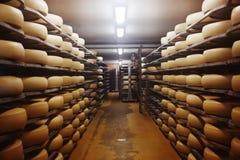 Foto de uma fábrica de queijo Fotos de Stock