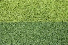 Foto de un campo de deportes sintético verde de la hierba Imagenes de archivo
