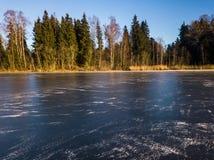 Foto de un lago congelado en un día del otoño Foto de archivo libre de regalías