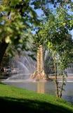 Foto de una fuente macra hermosa VDNH Moscú Fotografía de archivo libre de regalías