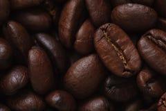 Foto dei chicchi di caffè Immagini Stock