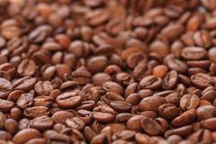 Foto dei chicchi di caffè Immagine Stock