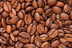 Foto dei chicchi di caffè Fotografia Stock Libera da Diritti