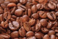 Foto dei chicchi di caffè Fotografia Stock