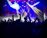 Foto dei giovani divertendosi al concerto rock, stile di vita attivo, Immagine Stock