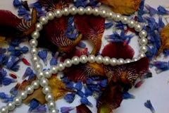 Foto dei petali del fiore, perle, gioielli, braccialetto, Immagini Stock