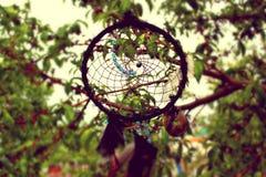 Foto del collettore di sogno Fotografie Stock