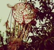 Foto del collettore di sogno Fotografia Stock Libera da Diritti