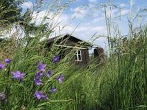 Foto del cottage del giardino in giardino con alta erba Fotografia Stock
