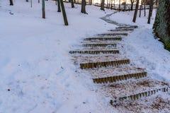 Foto del escaleras de madera vacías en parque en Sunny Winter Evening imágenes de archivo libres de regalías