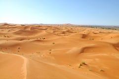 Desierto del Sáhara Imagenes de archivo