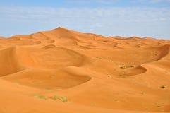 Desierto del Sáhara Fotos de archivo libres de regalías