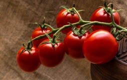foto del grupo de los tomates de la Cereza-cereza Foto de archivo libre de regalías