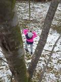Foto del invierno Foto de archivo