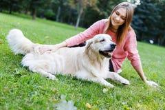 Foto del perro perdiguero de abrazo moreno en césped Imágenes de archivo libres de regalías
