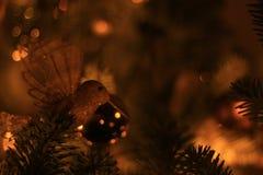 Foto del primer con las decoraciones de oro del pájaro del árbol de navidad Fotografía de archivo libre de regalías