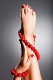 Foto del primer de pies femeninos hermosos. Imagen de archivo