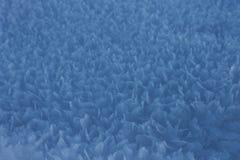 Foto del primo piano bianco della neve fotografia stock libera da diritti