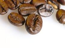 Foto del primo piano dei chicchi di caffè. Fotografia Stock Libera da Diritti