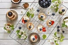 Foto del primo piano dei dolci casalinghi con il formaggio di mascarpone, la cannella, le fragole, i mirtilli ed il bello floweri Fotografia Stock