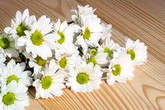 Foto del primo piano dei fiori bianchi sui precedenti di legno fotografia stock