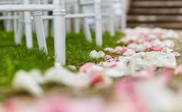 Foto del primo piano dei petali rosa sul modo all'altare di nozze Immagini Stock Libere da Diritti