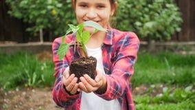 Foto del primo piano della piantina sorridente della tenuta della ragazza con suolo in mani Immagini Stock Libere da Diritti