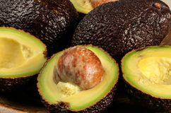 Foto del primo piano - la varietà marrone matura del bilse dei hass degli avocado è dimezzato, dettaglio sul seme della frutta fotografie stock libere da diritti