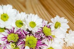 Foto del primo piano del mazzo dei fiori sui precedenti di legno fotografie stock libere da diritti