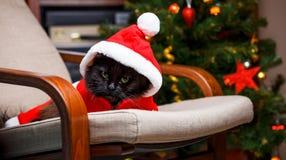 Foto del ` s del Año Nuevo del gato negro en el traje de Papá Noel Imagen de archivo libre de regalías